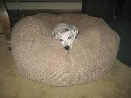Unchewable Dog Bed by Splendid Big Fluffy Dog Bed 85 Big Fluffy Dog Bed Big Fluffy Dog