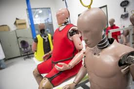 New Crash Test Dummies Look More Like Americans Obese And Aging