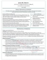 Human Resources Leadership Resume Sample