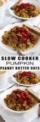 Libbys Pumpkin Oatmeal Bars by 428 Best It U0027s Pumpkin Time Images On Pinterest Pumpkin