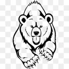 California Grizzly Bear American Black Drawing