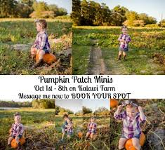 Heather Hill Pumpkin Patch by Kalawi Farms And Ben U0027s Ice Cream Posts Facebook