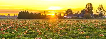 Best Pumpkin Patch Indianapolis by Earth Day 2016 Events Near Indianapolis