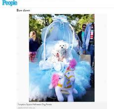 Vienna Halloween Parade 2014 by Cinderella Bella Mia Wins 3rd Place At Tompkins Square Park