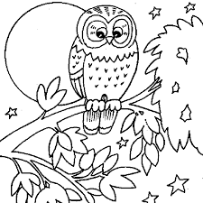 Owl Coloring Book Pages