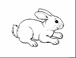 Great Kids Animal Coloring Pages To Print With And For
