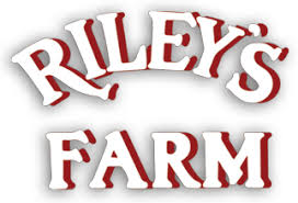 Rileys Pumpkin Patch Pittsburgh by Riley U0027s Farm Riley U0027s Farm Riley U0027s Farm