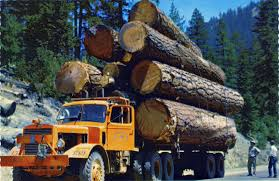 Fully Loaded, Perhaps Overloaded, Logging Truck, Washington State ... Truck With Logs Heavyhauling Pinterest The 1945 Intertional Logging Sierra Nevada Museum My Brakes Locked Up Logging Truck Driver At Cape Perpetua Hq 142 Hdx For Spin Tires Update Rolls Over On Ashby Road Kenworth 849 Pre Load Ta Trailer Forestech A Log Loader Or Forestry Machine Loads At Site 1949 Diamond T 2014 Antique Show Put O Flickr 16th Bruder Mack Granite Knuckleboom Grapple Crane Charlotte County Man Suffers Minor Injuries In Wreck Harvester Mule Train Simulator 2 Android Apps Google Play