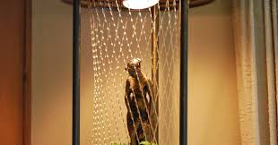 Rain Oil Lamp Instructions by History U0027s Dumpster Rain Lamps