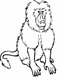 RainForest Mammals Coloring Pages Picture 13 Printable Rainforest Animal