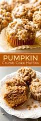 Bisquick Pumpkin Chocolate Chip Muffins by Pumpkin Crumb Cake Muffins Recipe Icing Recipe And Muffin