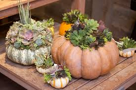 Corona Del Mar Pumpkin Patch by Gear Up For Some Spooktacular Halloween Fun In Nb Visit Newport