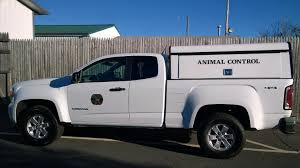Pets For Adoption At Ellington Animal Control, In Ellington, CT ... Built Animal Control Trucks For Two Different Counties There May Visalia Police Search Suspect Who Stole City Animal Control Truck Bodies Trivan Body 2011 Dodge Ram 2500hd Crew Cab Pickup Truck City Of Bozeman Law Enforcement On Chevy Colorado 4x4 By New Icon Isometric 3d Style Royalty Free Cliparts Marion County Services Bb Graphics The Wrap Cordele Georgia Crisp Watermelon Restaurant Attorney Bank Hospital Diecast Hobbist 1976 B100 Van Removes Dogs Rats And Snakes From Smithfield Home Wjar