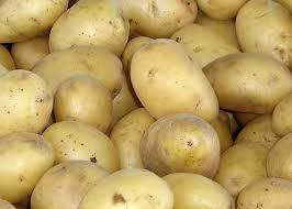 UPC 033383536507 Product Image For Potato Russet 10lb Bag