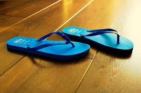 Flip Flops Summer Blue Beach Sandal Holida