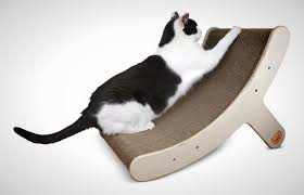 Pampered Pets Bed And Biscuit by 30 Pretty Purr Fect Gifts For Your Pet Brit Co