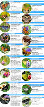 Easy Heat Warm Tiles Menards by Attracting Butterflies At Menards