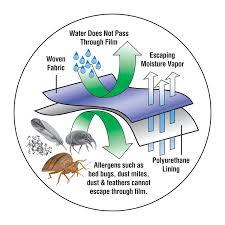 amazon com bed bug blocker all in one zip up mattress protector
