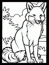 Fox3 Animals Coloring Pages