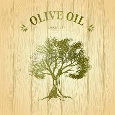 Vector green olives Vector