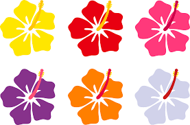 Maroon Flower Cliparts 2488169