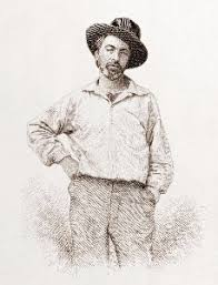 walt whitman the wound dresser meaning the wound dresser by walt whitman summary quotes study