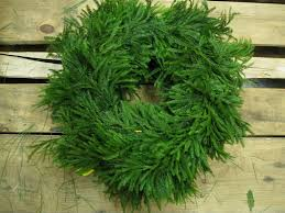 What Is The Best Christmas Tree by Princess Pine Makes The Best Wreaths And Garlands Christmas