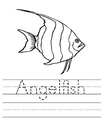 Angel Fish Worksheet Coloring Page