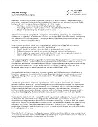 A Resume Summary Examples ResumeExamples