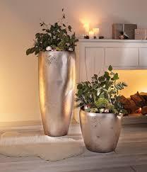 übertopf mit pflanzeinsatz silberglanz 85 cm pflanzen