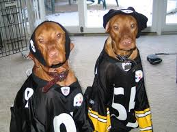 Pittsburgh Steelers Behind The Steel Curtain by 88 Best Steelers Images On Pinterest Colleges Custom