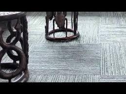house pet carpet gray carpet and room