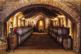 104 White House Wine Cellar Buena Vista Ry S Vines Analytics