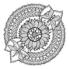 Tournesol Fleur Soleil Dans Une Casserole Coloriage Photo Coloration