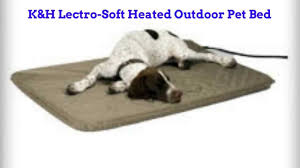 Extra Large Orthopedic Dog Bed by Cash Back Rewards K U0026h Lectro Soft Padded Heated Indoor Outdoor