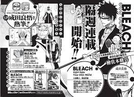 Revisit The Bleach Franchise In New Digital Novel Cant Fear Your