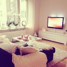 Cute Living Room Ideas For College Students by Living Room Winsome Cozy Apartment Living Room Decorating Ideas