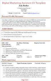 Digital Marketing Assistant Cv Template Tips And Download Plaza Rh Cvplaza Com Sample Example