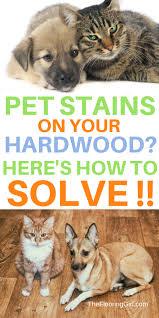 Fleas Hardwood Floors Borax by Getting Rid Of Fleas On Hardwood Floors Titandish Decoration