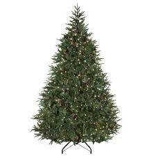 Hayneedle Christmas Trees by Carolina Pine Christmas Tree Christmas Lights Decoration