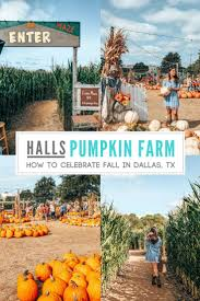 Pumpkin Patch Farms Nashville Tn by 225 Best Road Trip Southern Three Day Weekends Images On