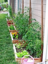 Wonderful Patio Vegetable Garden Ideas Do This Along Back Wall Of Garage Perfect Herb Container
