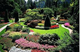 Jacksonville Fl Landscape Design Best Landscaping Ideas
