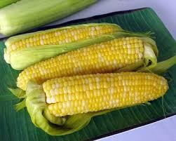 cuisiner des epis de mais recette épis de maïs à la mexicaine