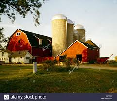 Wisconsin Dairy Farm With Red Barn And Outbuildings And Three Tall ... Woodland Papercuts Custom Three Barn Farm Ketubah Belli Fiori St Louis Florist Cedars In Northville Michigan Wedding Land With Barns Ponds And Open Fields For Sale Rustic Entry Burlap Curtains At Streams Three Chimneys Farm Google Search The Pinterest Katie Kyle Get Married Anna Jones Photography Lilly Sadies Love Perry Mist Rolling Over Hills Onto A With Red Kansas Flint Quilt Trail