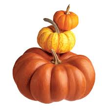 Types Of Pumpkins For Baking by Healthy Recipes And Tips For Cooking With Pumpkin Cooking Light