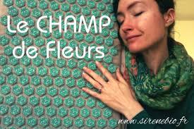 tapis le ch de fleurs solution santé et bien être au naturel