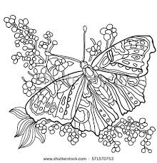 Butterfly And Flowers Coloring Book For Adult Older Children Page With Decorative