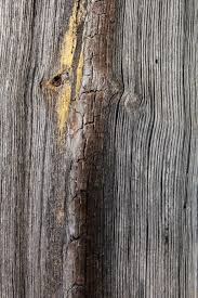 Barn Wood Texture 02 By Thy-Darkest-Hour On DeviantArt Old Wood Texture Rerche Google Textures Wood Pinterest Distressed Barn Texture Image Photo Bigstock Utestingcimedyeaoldbarnwoodplanks Barnwood Yahoo Search Resultscolor Example Knudsengriffith The Barnwood Farmreclaimed Is Our Forte Free Images Floor Closeup Weathered Plank Vertical Wooden Wall Planking Weathered Of Old Stock I2138084 At Photograph I1055879 Featurepics Photos Alamy