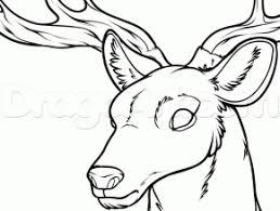Deer Head Drawing Coloring Page